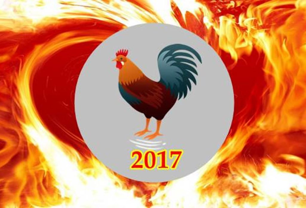 tahun ayam api 2017