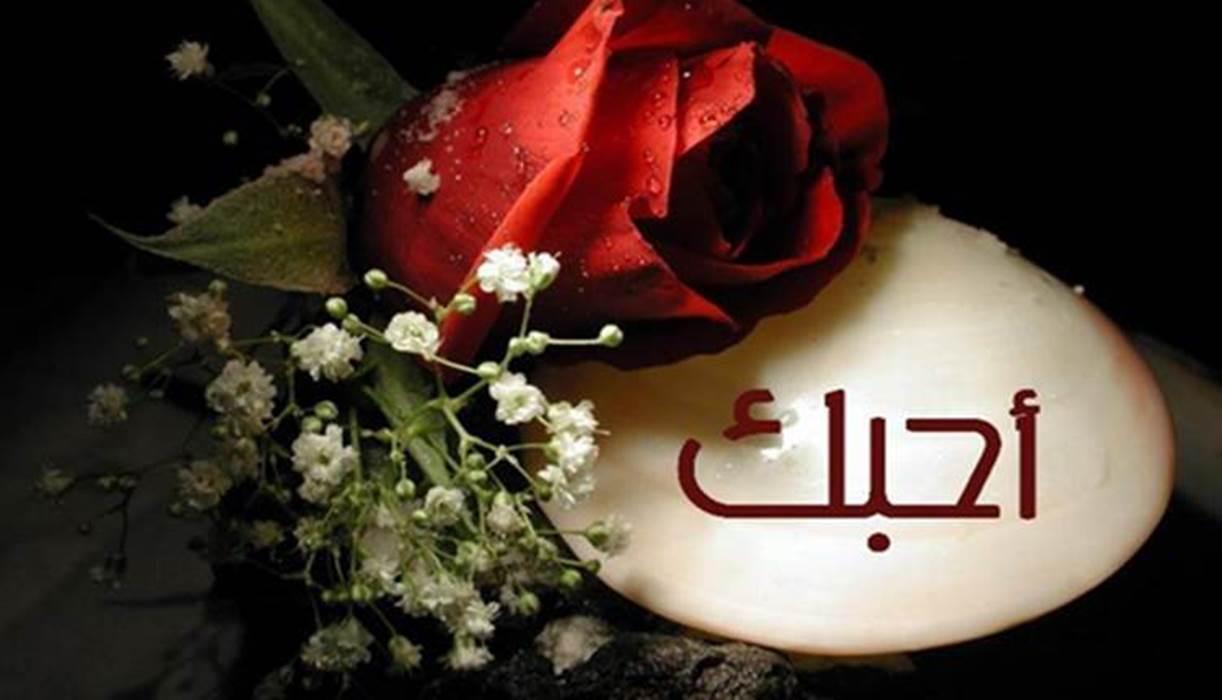 55 Kata Cinta Bahasa Arab Artinya Sungguh Menyentuh Qalbu Diedit Com