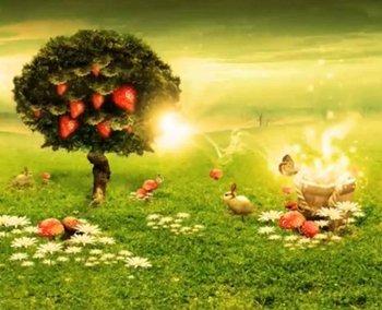 pohon surga