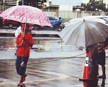 jasa payung