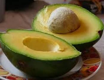 alpokat avocado