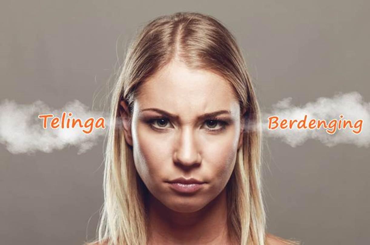 telinga berdenging