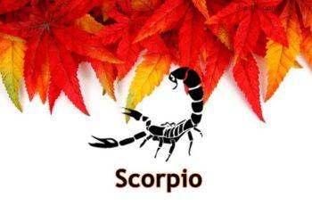ramalan bintang scorpio 2018