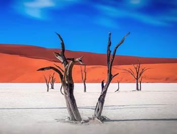 gurun pasir namibia