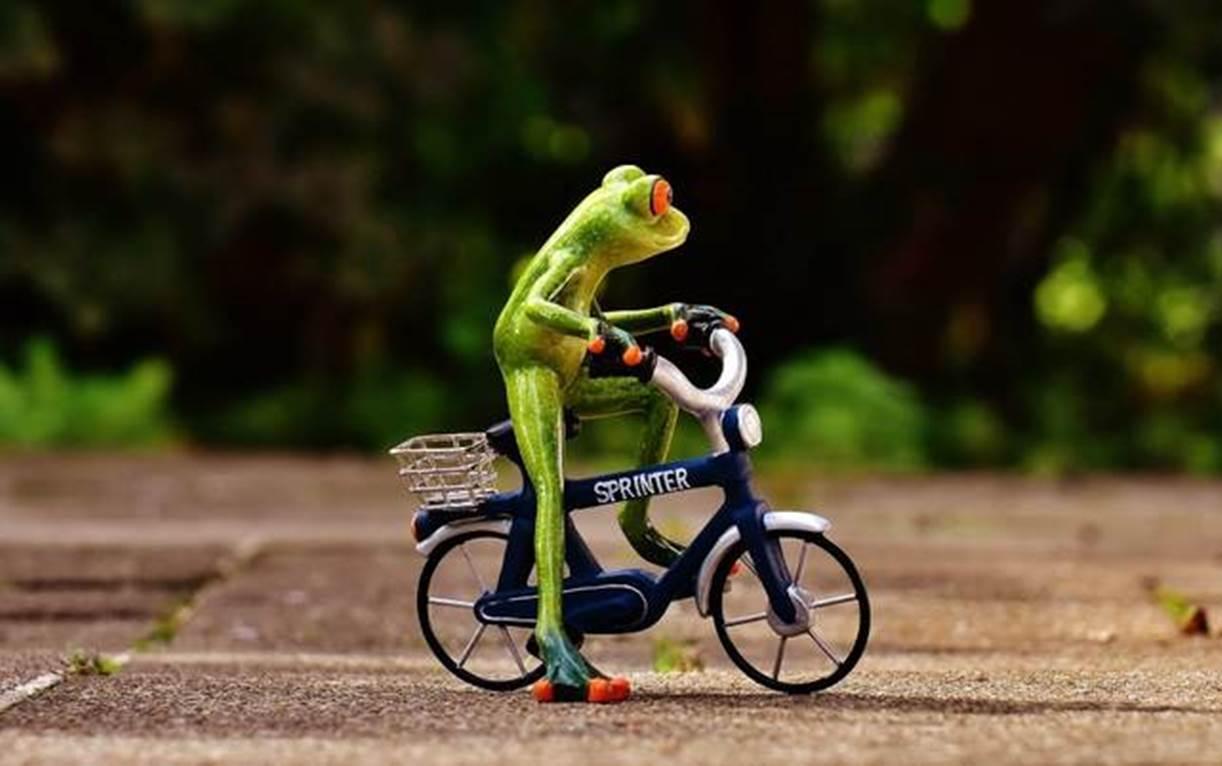 sepeda mahal unik
