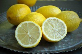 buah jeruk lemon
