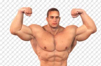 meningkatkan massa otot
