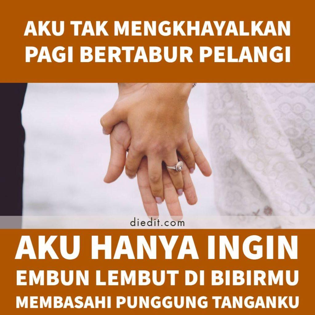kata kata cinta untuk istri