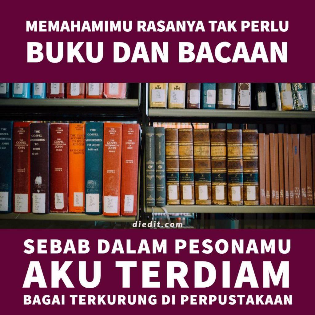 kata kata memahami cinta - Memahamimu rasanya tak perlu buku dan bacaan. Sebab dalam pesonamu, aku terdiam bagai berada di perpustakaan.