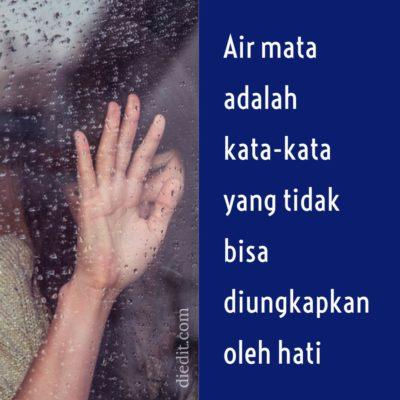 kata sedih - Air mata adalah kata-kata yang tidak bisa diungkapkan oleh hati.