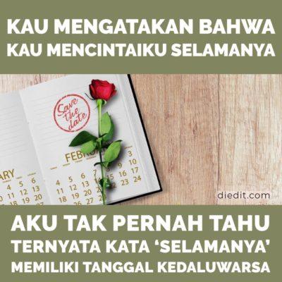 kata sedih - Engkau mengatakan bahwa engkau mencintaiku selamanya. Aku tidak pernah tahu, ternyata 'selamanya' memiliki tanggal kedaluwarsa.