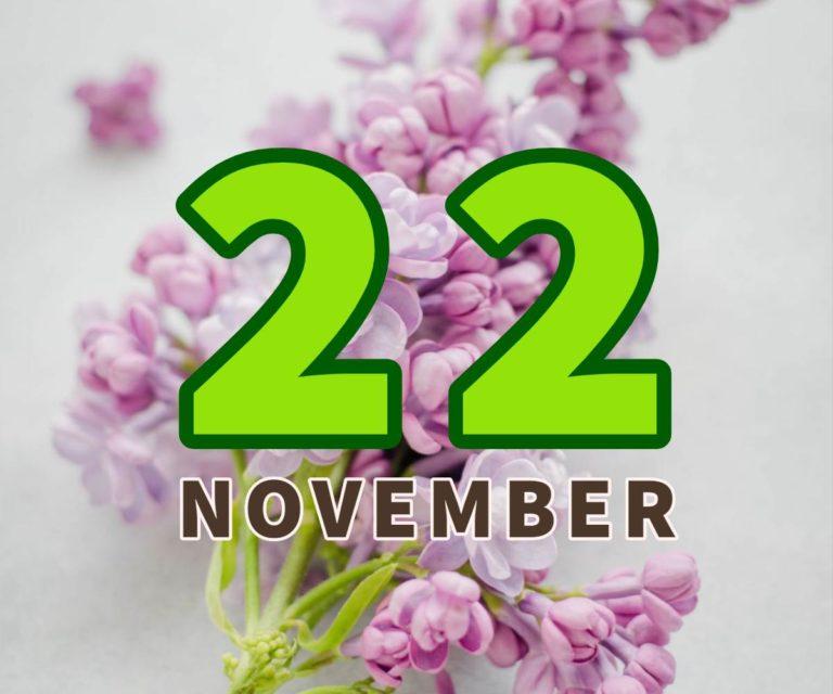 lahir 22 november