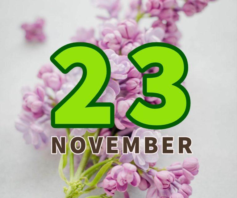 lahir 23 november