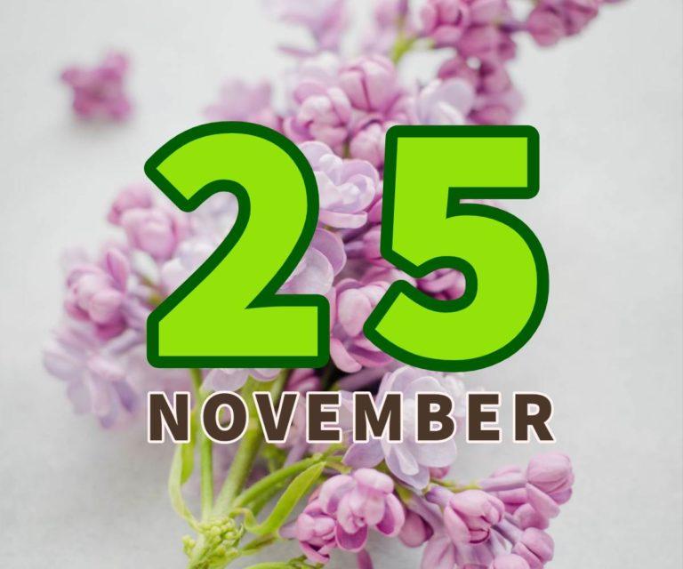 lahir 25 november