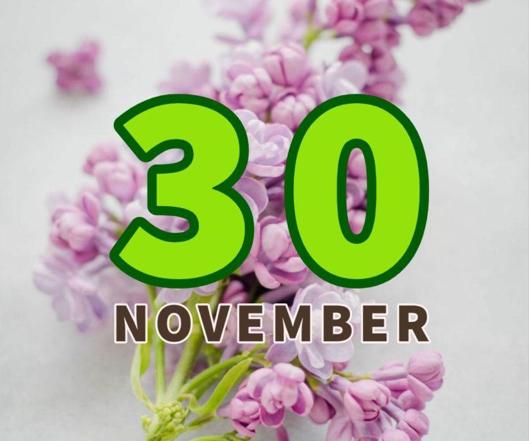 lahir 30 november